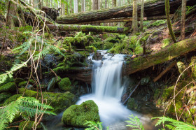 Waterfall Mt. Horne